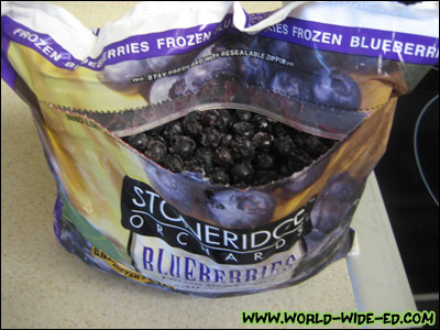 Big Bag o' Blueberries
