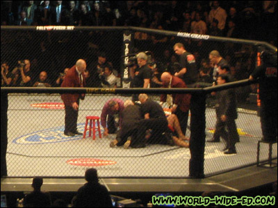 Silva still on the ground after a vicious Machida punch