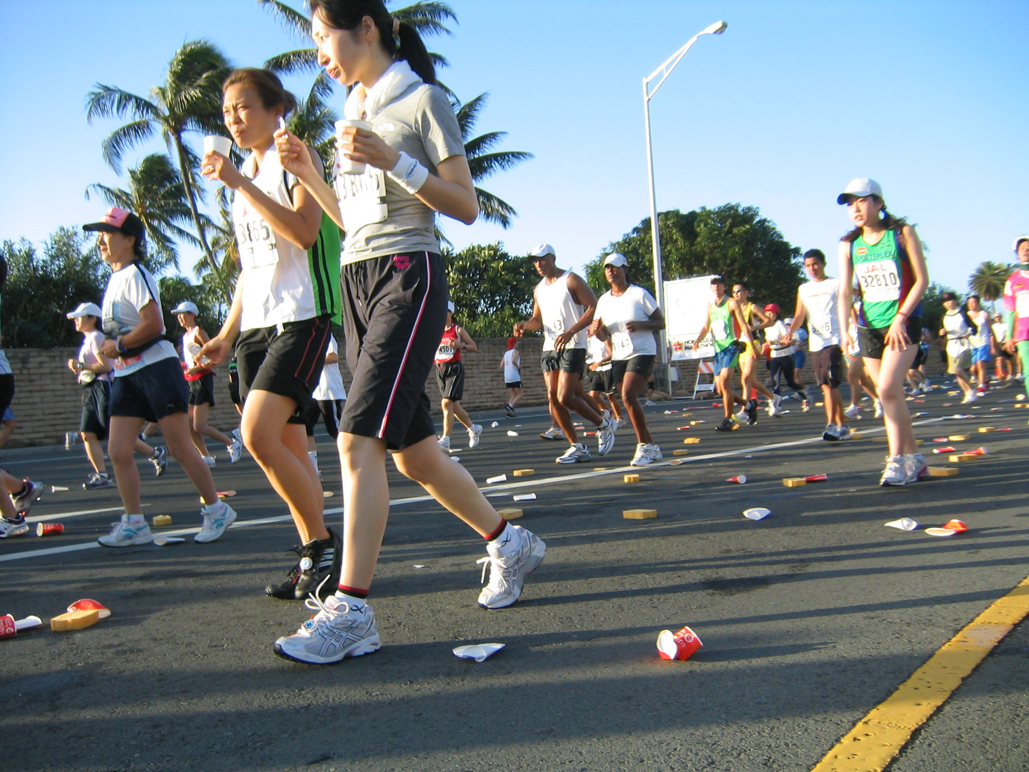 Honolulu Marathon Shmonolulu Shmarathon - If You Can Walk, You Can Roll