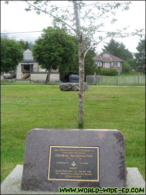 Tree planted for George Washington