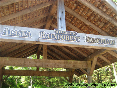 Alaska Rainforest Sanctuary